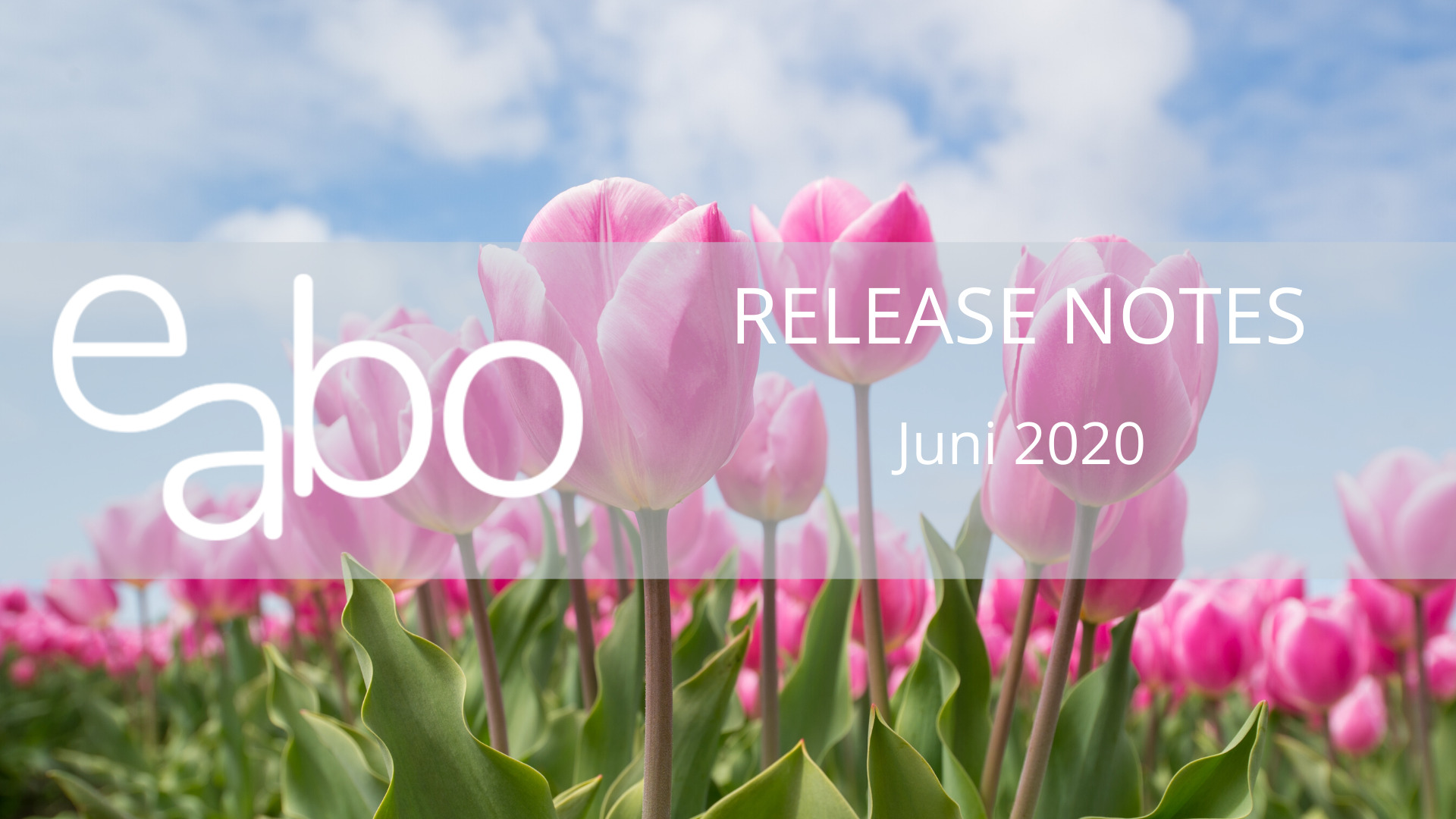 Release-Notes-Juni-2020