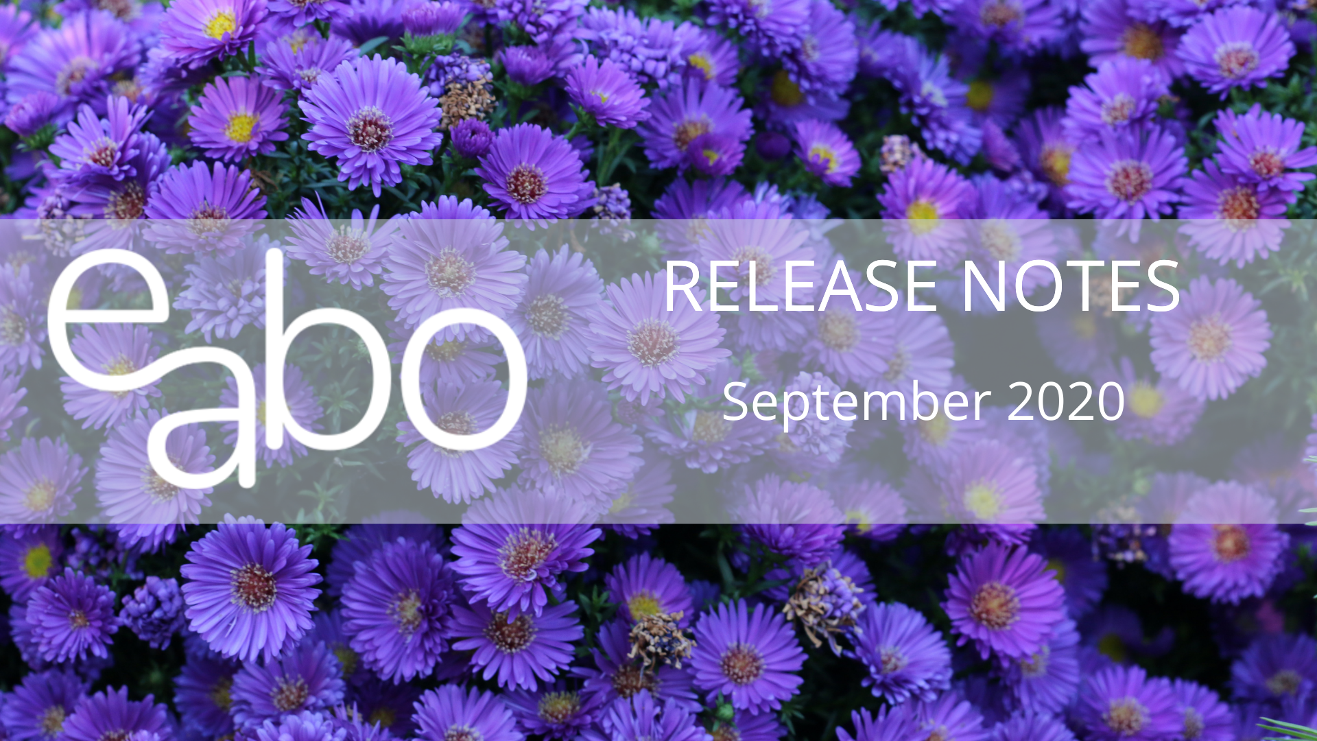 Release Notes Sep. 2020